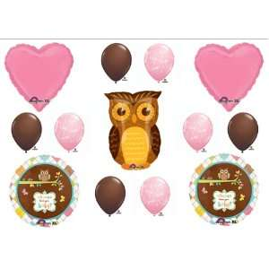 Baby Girl Owl Look Whooo Shower balloons Decorations