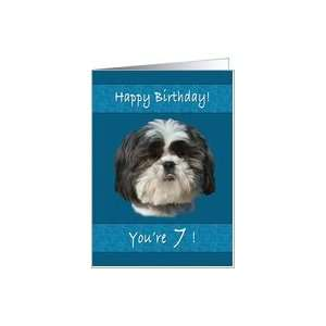 Birthday, 7th, Shih Tzu Dog Card Toys & Games