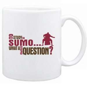New  To Study Or Sumo  What A Stupid Question ?  Mug
