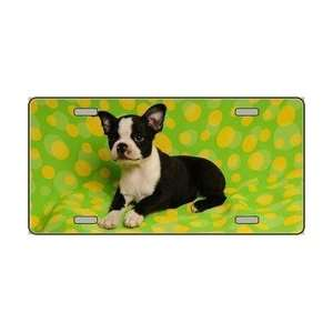 Boston Terrier Dog Pet Novelty License Plates Full Color Photography