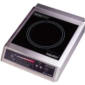CI 25 1 13 Countertop Induction Range