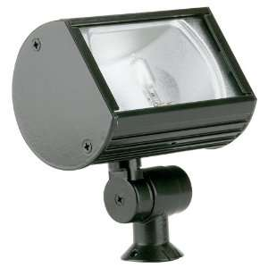 12 Ambiance Landscape Flood Light with Clear Tempered Glass, Black