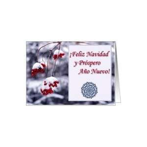 Merry Christmas in Spanish, Red Berries in Snow Card
